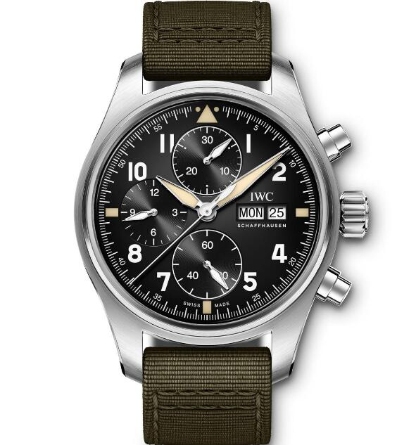 The IWC has been favored by many men with its brilliant appearance and high performance.